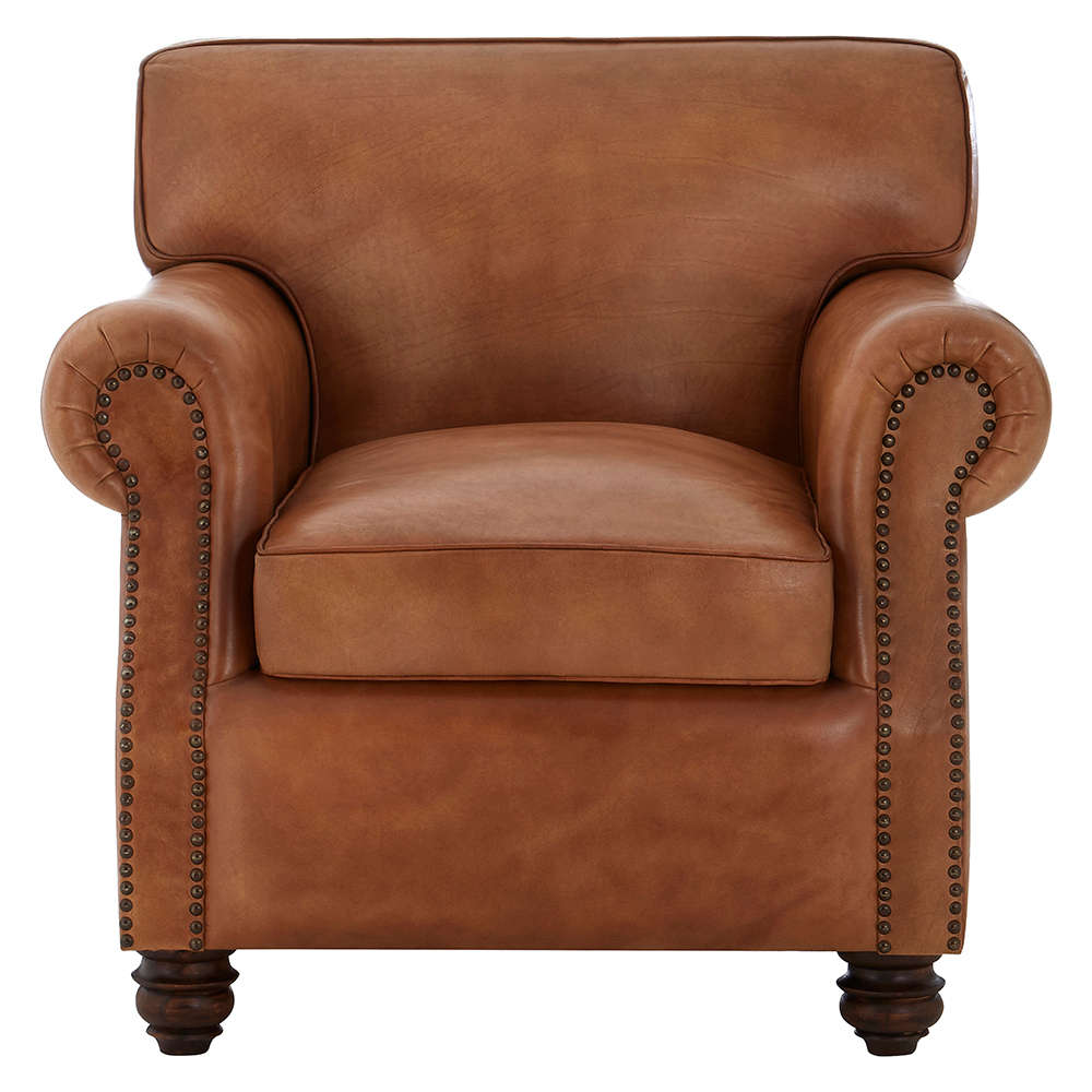 Awesome Light Brown Leather Armchair