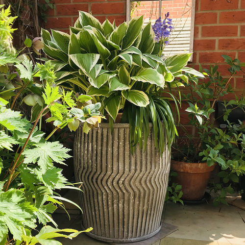 2 Metal Garden Vintage Style Planter Dolly Tubs